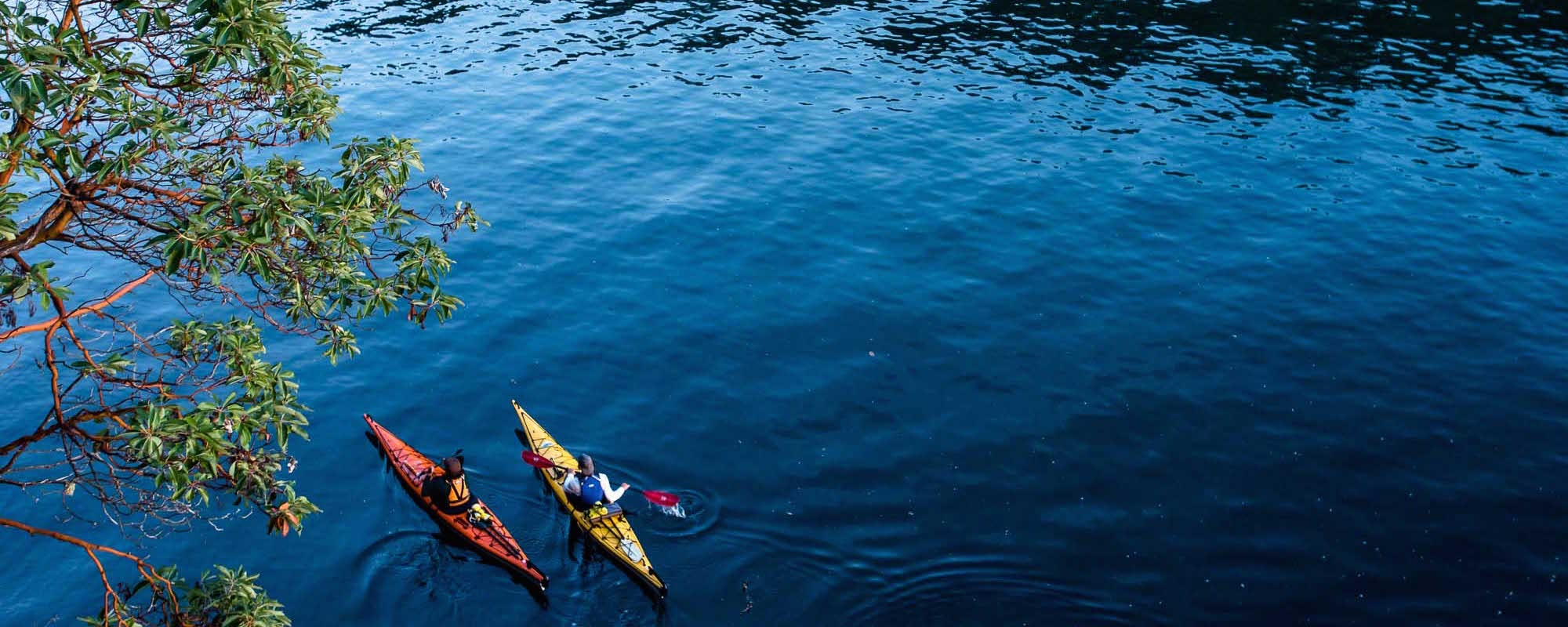 kayak tours around southern gulf islands led by  Pender Island Kayak Adventures team